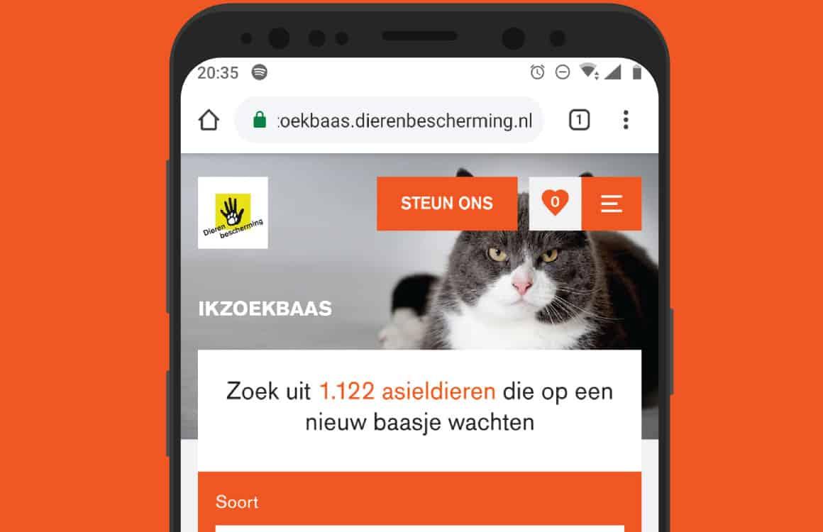 3 handige apps om een baasje voor je hond of kat te vinden